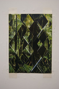 daniel steegman-collage